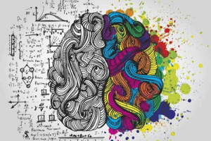 Module pédagoqique découverte des métiers, la créativité